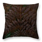 Fern Kaleidescope Throw Pillow