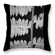 Fern Leaves 1 Throw Pillow
