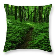 Fern Lined At In Ma Throw Pillow