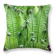 Fern Meet And Greet Throw Pillow