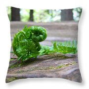 Fern On Big Redwood Tree Art Prints Baslee Troutman Throw Pillow
