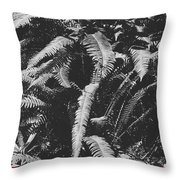 Fern Paradise  Throw Pillow