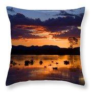Fern Ridge Sunset Throw Pillow