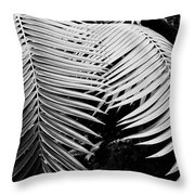 Fern Room Cycads Throw Pillow