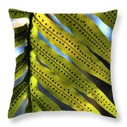 Fern Spores Throw Pillow