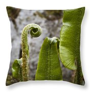 Fern Study At Blarney Castle Ireland Throw Pillow