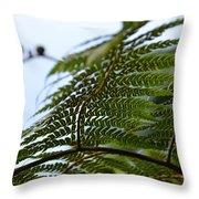 Fern Tree Frond Throw Pillow
