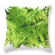 Fern Vignette Throw Pillow by JQ Licensing