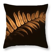 Fern Zen Throw Pillow
