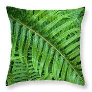 Ferns After A Spring Rain Throw Pillow