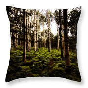 Ferns And Aspen Throw Pillow