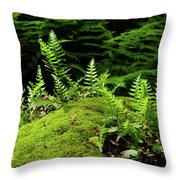 Ferns And Moss On The Ma At Throw Pillow