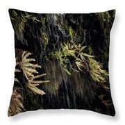 Ferns Below Falls By Jean Noren Throw Pillow