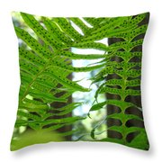 Ferns Green Redwood Forest Fern Giclee Art Prints Baslee Troutman Throw Pillow