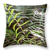 Ferns In Natural Light Throw Pillow
