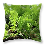 Ferns Of The Forest Floor Throw Pillow