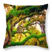 Ferns On Florida Oaks Throw Pillow