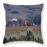 Ferruginous Hawk And Meadowlark Throw Pillow