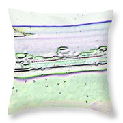 Ferry In The Rain Throw Pillow