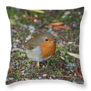 Festive Robin Throw Pillow