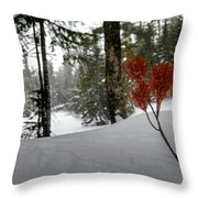The Voice Of The Keweenaw Throw Pillow