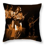 Fhat#39 Enhanced In Amber Throw Pillow