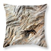 Fiddler Crab On Driftwood Throw Pillow