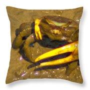 Fiddler Crab Pano Throw Pillow