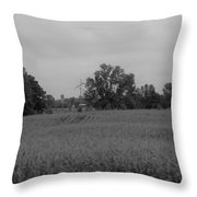 Field 1 Throw Pillow