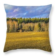Field And Sky.  Throw Pillow