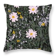 Field Daisies Throw Pillow