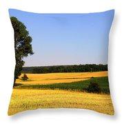 Field Flow Throw Pillow