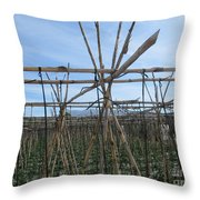 Field In Fornes Throw Pillow
