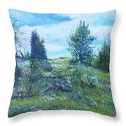 Field In The Langeberg Western Cape South Africa 2016 Throw Pillow