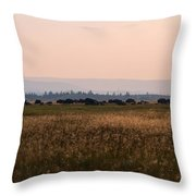 Field Of American Bison  Throw Pillow