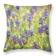 Field Of Blue Lupines  Throw Pillow