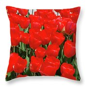 Field Of Brilliant Red Tulip Flowers In A Garden Throw Pillow