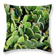 Field Of Cactus Paddles Throw Pillow