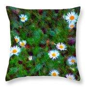 Field Of Daisys  Throw Pillow