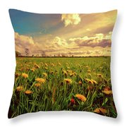 Field Of Dandelions At Sunset Throw Pillow