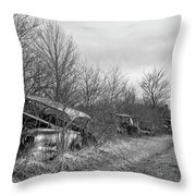Field Of Dreams IIi Throw Pillow