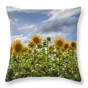 Field Of Dreams Panorama Throw Pillow