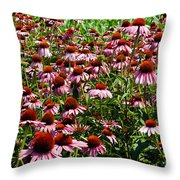 Field Of Echinacea Throw Pillow