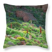 Field Of Echium Wildpretii In The Teide National Park Throw Pillow
