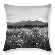 Field Of Flowers In Black And White Throw Pillow