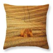 Field Of Gold #3 Throw Pillow