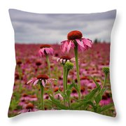 Field Of Health Throw Pillow