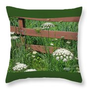 Field Of Lace Throw Pillow