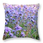 Field Of Lavendar Throw Pillow