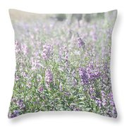 Field Of Lavender Flowers Throw Pillow by Beverly Cazzell